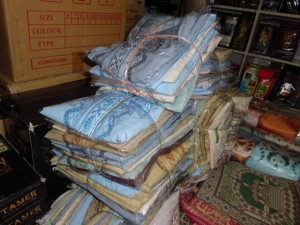 CIMG0880 (FILEminimizer)