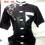 Baju Koko Bordir Lengan Pendek Keren